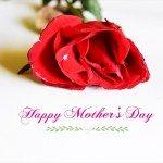 母の日|プレゼントの相場や予算は…母親が喜んだのは…調査
