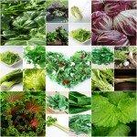 グリーンスムージーのおすすめ葉野菜 | 種類と保存方法まで