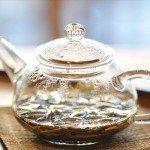 モリンガ茶の効能|2年間飲んで分かった効果から飲み方まで